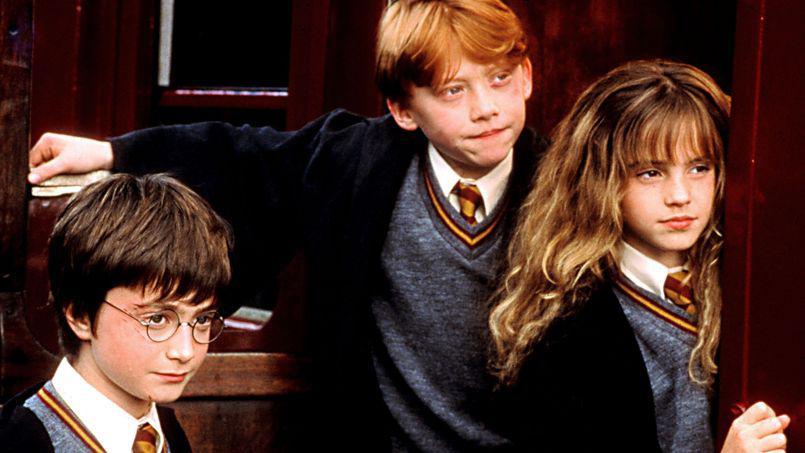 moustache et vous tout sur Harry Potter